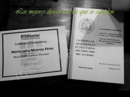 Proveedora Básica DIR-Floortime. Certificado por la ICDL